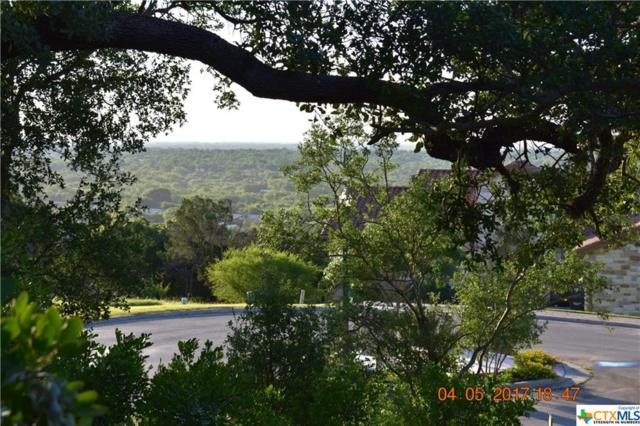 511 Elm Trail, New Braunfels, TX 78130 (MLS #312131) :: Magnolia Realty