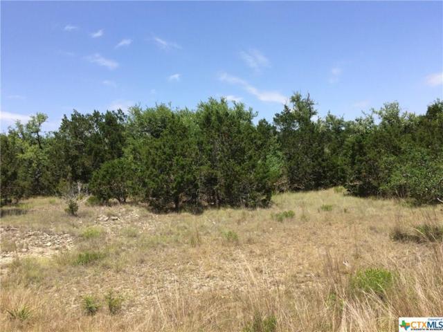 542 Primrose Path, Canyon Lake, TX 78133 (MLS #313510) :: Magnolia Realty