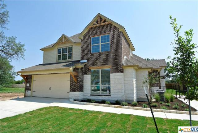 104 San View Drive, Georgetown, TX 78628 (MLS #314579) :: The Suzanne Kuntz Real Estate Team