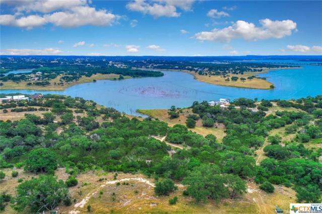 2146 San Jose Way, Canyon Lake, TX 78133 (MLS #314674) :: Magnolia Realty
