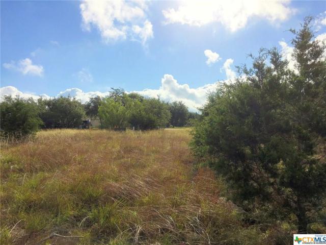 102 Cielo Vista, Canyon Lake, TX 78133 (MLS #316655) :: Magnolia Realty