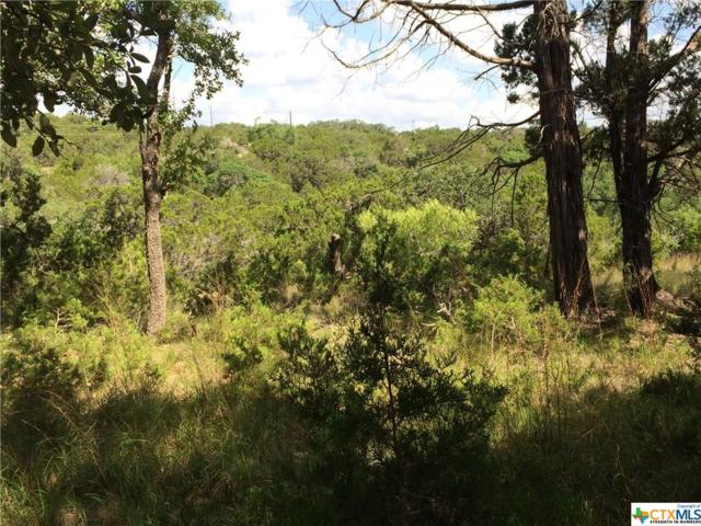 190 Magnolia Meadow, Canyon Lake, TX 78133 (MLS #316842) :: Magnolia Realty
