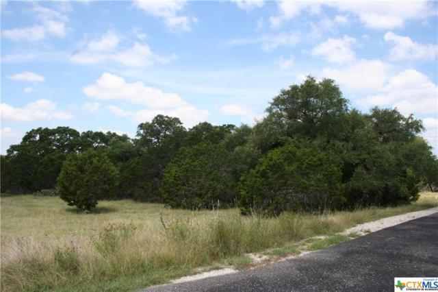 157 Prairie Dawn, Spring Branch, TX 78070 (MLS #317348) :: Magnolia Realty