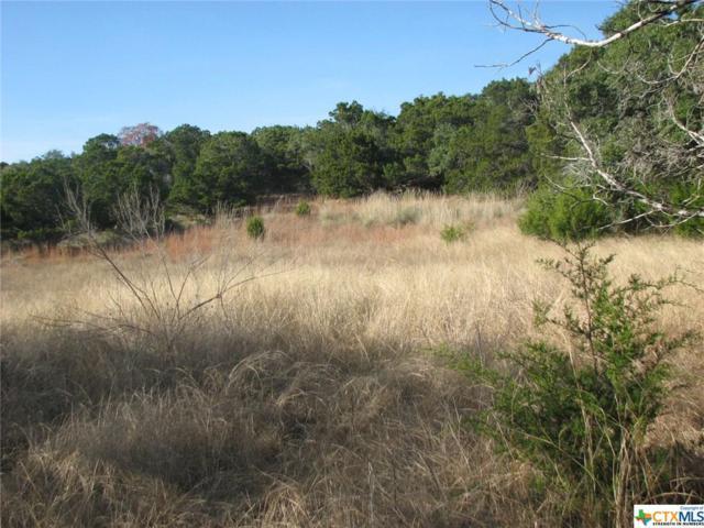 517 Rio Ridge, Spring Branch, TX 78070 (MLS #317416) :: Magnolia Realty