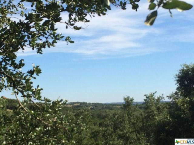 225 Magnolia Meadow, Canyon Lake, TX 78133 (MLS #317459) :: Magnolia Realty