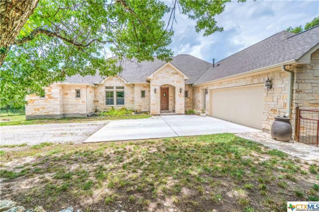 255 N Showhorse Drive, Liberty Hill, TX 78642 (MLS #317499) :: Magnolia Realty