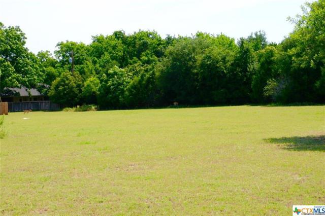 1451 Chisholm Trail, Salado, TX 76571 (MLS #317570) :: Erin Caraway Group