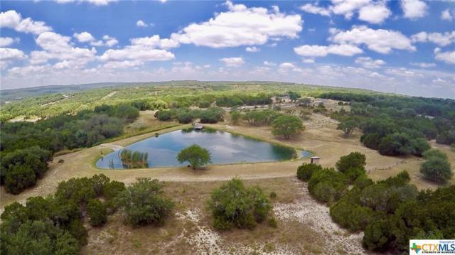 208 Sendera, Canyon Lake, TX 78133 (MLS #318537) :: Magnolia Realty