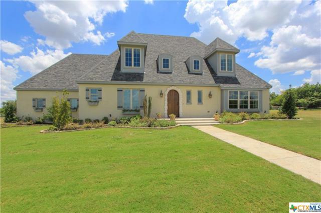 1146 Shepherd Drive, Salado, TX 76571 (MLS #318652) :: Berkshire Hathaway HomeServices Don Johnson, REALTORS®