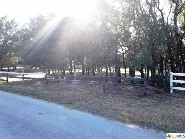 2210 Fuller, Harker Heights, TX 76548 (MLS #319350) :: Erin Caraway Group