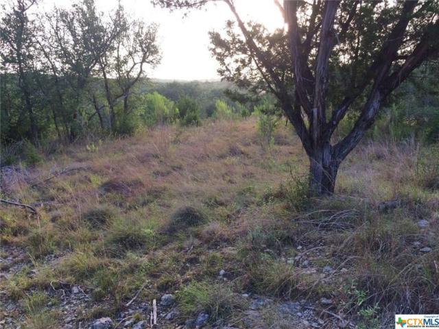 414 Cima Vista, Canyon Lake, TX 78133 (MLS #319465) :: Magnolia Realty