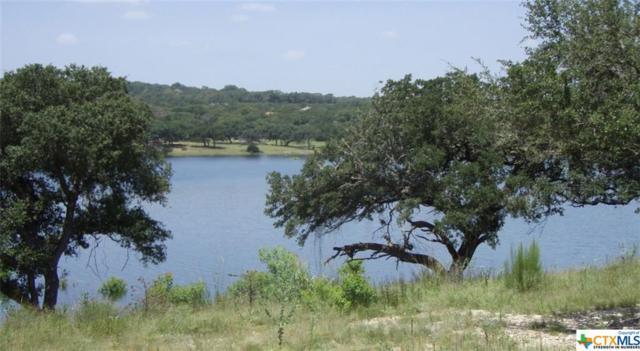 1994 Bella Vista, Canyon Lake, TX 78133 (MLS #319962) :: Magnolia Realty
