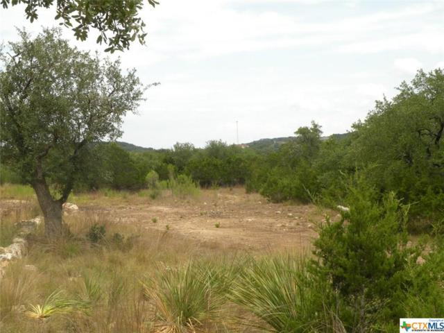 2472 Frontier, Spring Branch, TX 78070 (MLS #320051) :: Magnolia Realty