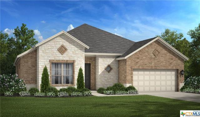 1181 Nutmeg Trail, New Braunfels, TX 78132 (MLS #320810) :: Magnolia Realty