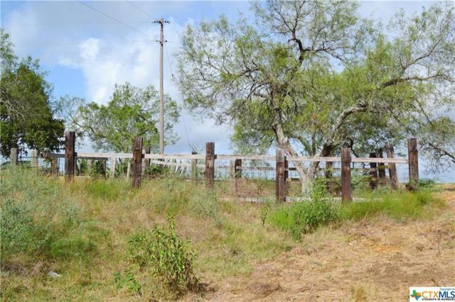 3631 N Us Highway 183, Gonzales, TX 78629 (MLS #321287) :: Magnolia Realty
