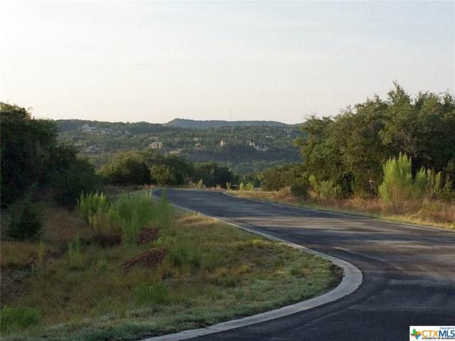 113 Santa Maria, Canyon Lake, TX 78133 (MLS #321616) :: Magnolia Realty