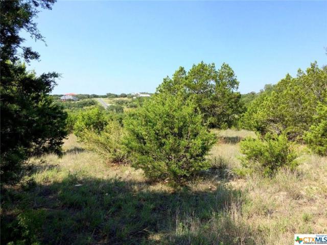 112 San Salvadore (Both Lots 186 & 187) 2.763 Acre, Canyon Lake, TX 78133 (MLS #322024) :: Magnolia Realty