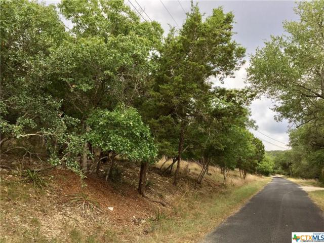 5 La Quinta, Wimberley, TX 78676 (MLS #323352) :: Erin Caraway Group
