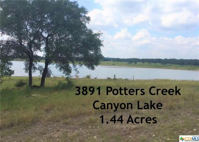 3891 Potters Creek, Canyon Lake, TX 78133 (MLS #324142) :: The Suzanne Kuntz Real Estate Team