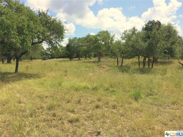 1633 Bella Vista, Canyon Lake, TX 78133 (MLS #324381) :: Magnolia Realty
