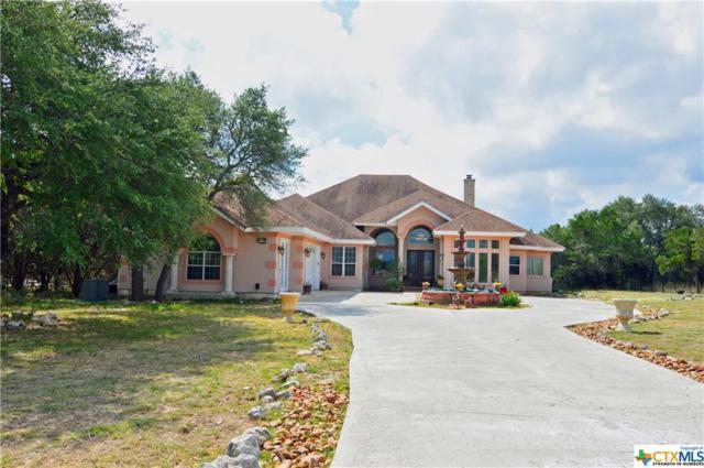 232 Steeplebrook, Spring Branch, TX 78070 (MLS #324491) :: The Suzanne Kuntz Real Estate Team