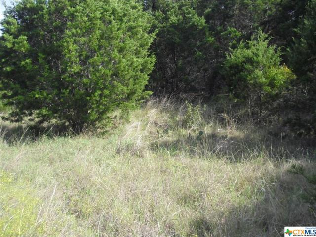 0 Fm 3424, Canyon Lake, TX 78133 (MLS #326579) :: Erin Caraway Group