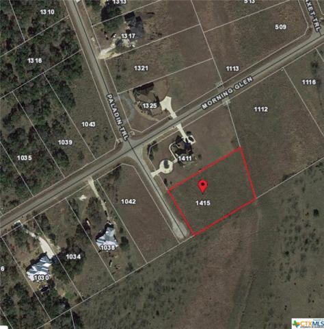 1415 Paladin, Spring Branch, TX 78070 (MLS #326586) :: Erin Caraway Group