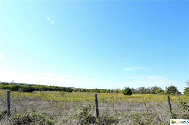 000 Lower Troy Rd, Temple, TX 76501 (MLS #326730) :: Magnolia Realty