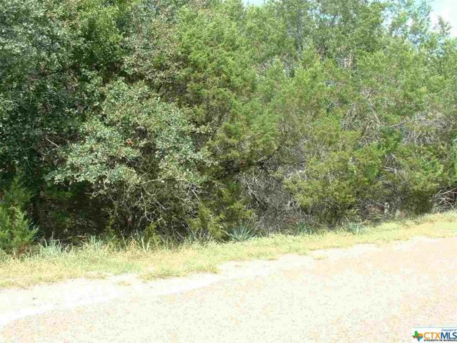 22&24 Canyon Circle, Morgan's Point Resort, TX 76513 (MLS #326771) :: Magnolia Realty