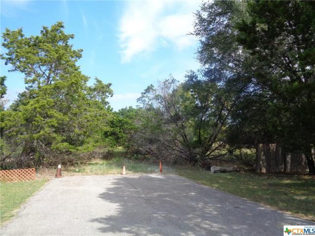 7 Archer Drive, Belton, TX 76513 (MLS #326879) :: Magnolia Realty