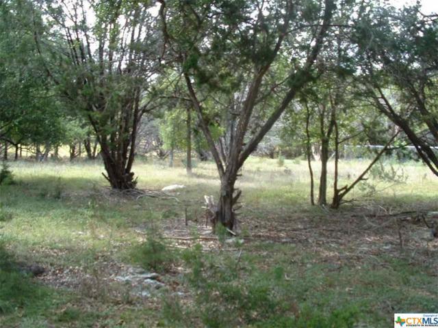 0000 Artesian, Morgan's Point Resort, TX 76513 (MLS #326888) :: Magnolia Realty