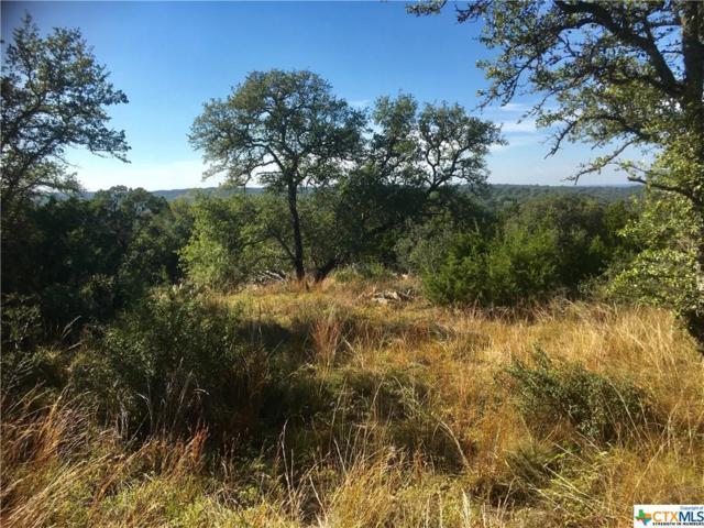 330 Sheridan Dr, Canyon Lake, TX 78133 (MLS #327034) :: Magnolia Realty