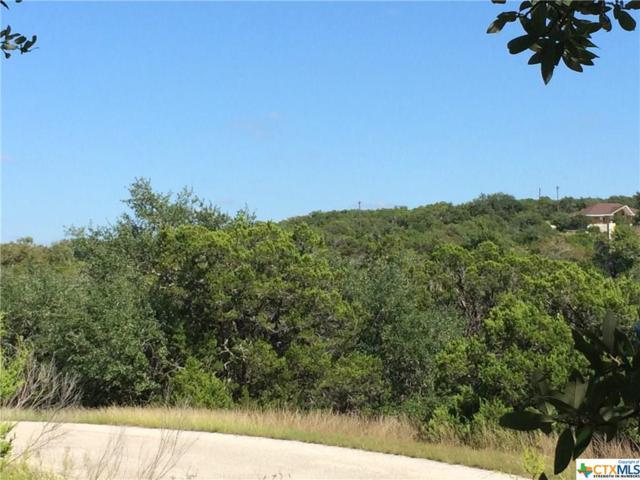 206 Magnolia Meadow, Canyon Lake, TX 78133 (MLS #327041) :: Magnolia Realty