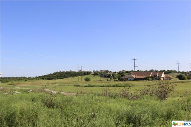 Lot 9 Kyleigh Drive, Salado, TX 76571 (MLS #327083) :: Magnolia Realty