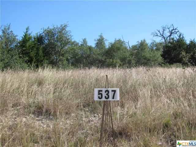 537 Cantera Ridge, New Braunfels, TX 78132 (#327563) :: Realty Executives - Town & Country