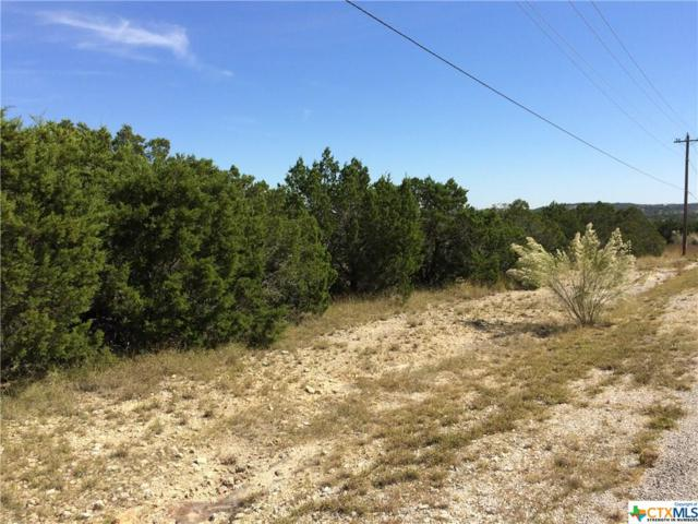 452 Lets Roll Drive, Fischer, TX 78623 (MLS #327612) :: Magnolia Realty