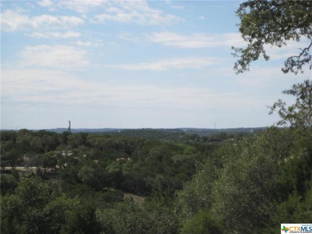 1651 Primrose Path #5, Canyon Lake, TX 78133 (MLS #328878) :: Magnolia Realty