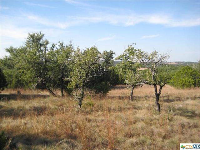 850 Primrose Path #2, Canyon Lake, TX 78133 (MLS #328942) :: Magnolia Realty