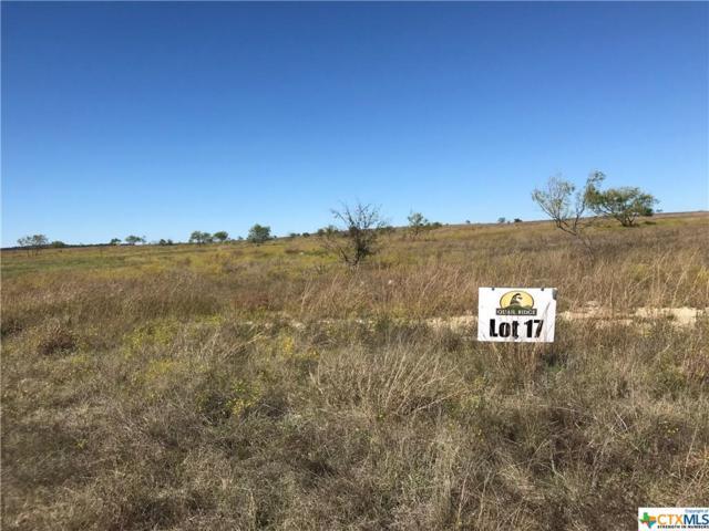 Tract 17 County Road 2323, Lampasas, TX 76550 (MLS #328951) :: Erin Caraway Group