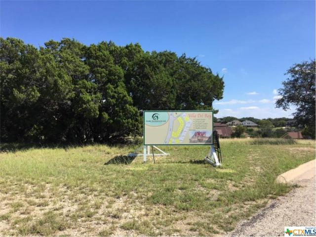 3919 Del Rey, Harker Heights, TX 76548 (MLS #329002) :: Magnolia Realty
