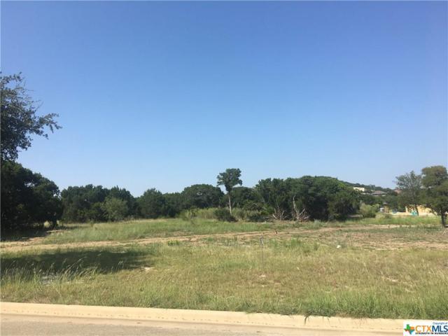 3914 Del Rey, Harker Heights, TX 76548 (MLS #329025) :: Magnolia Realty
