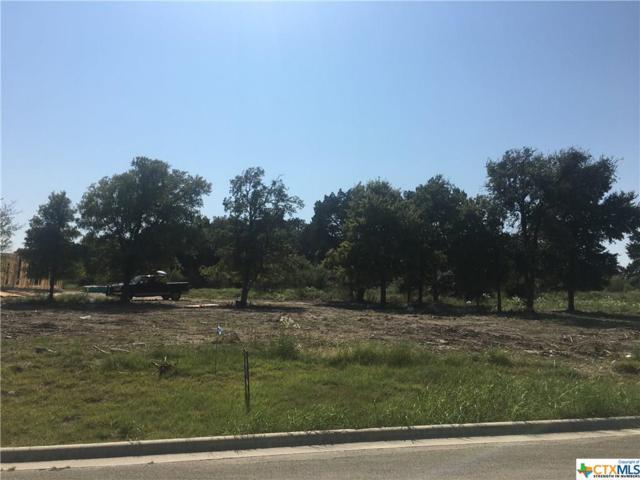 3906 Del Rey, Harker Heights, TX 76548 (MLS #329030) :: Magnolia Realty