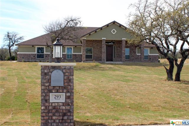 293 Skyline Drive, Copperas Cove, TX 76522 (MLS #329056) :: Erin Caraway Group