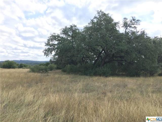 2053 San Jose Way, Canyon Lake, TX 78133 (MLS #329364) :: Magnolia Realty