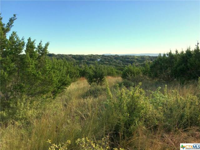 224 San Salvadore, Canyon Lake, TX 78133 (MLS #329418) :: Magnolia Realty