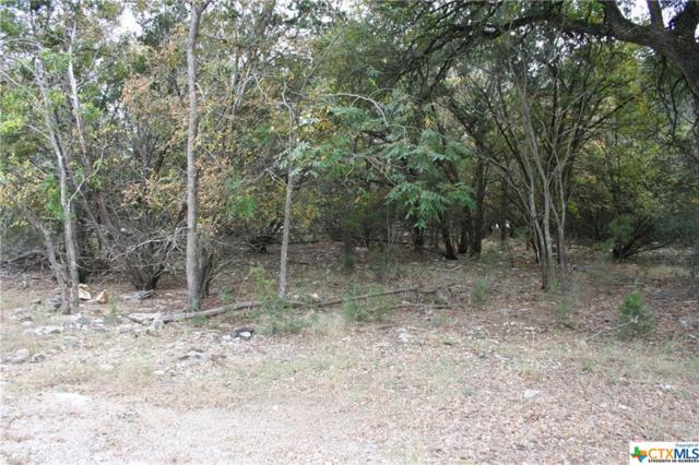 6 Hackberry Court, Morgan's Point, TX 76513 (MLS #329877) :: Magnolia Realty