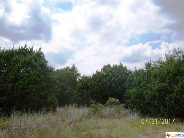 104 High Circle, Gatesville, TX 76528 (MLS #330166) :: Magnolia Realty