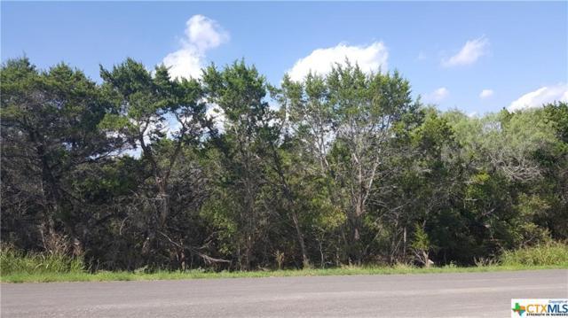 120 Hideaway Heights, New Braunfels, TX 78132 (MLS #330232) :: Erin Caraway Group