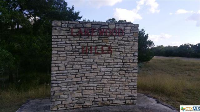 Lot 22 Woodridge, Canyon Lake, TX 78133 (MLS #330294) :: Erin Caraway Group