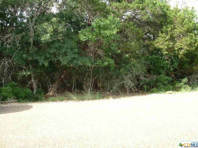 16119 Salado, Temple, TX 76502 (MLS #330322) :: The Suzanne Kuntz Real Estate Team